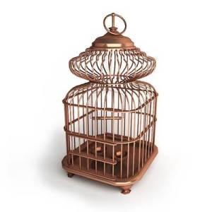 birds-cage-01-c-01